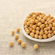 White hilum soybeans