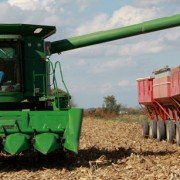 Photo of corn harvesting