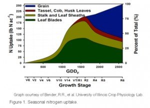 Corn N Chart