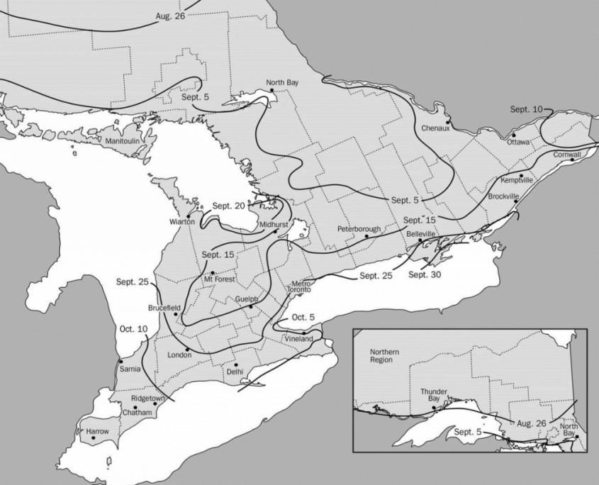 Optimum date to seed winter wheat across Ontario map