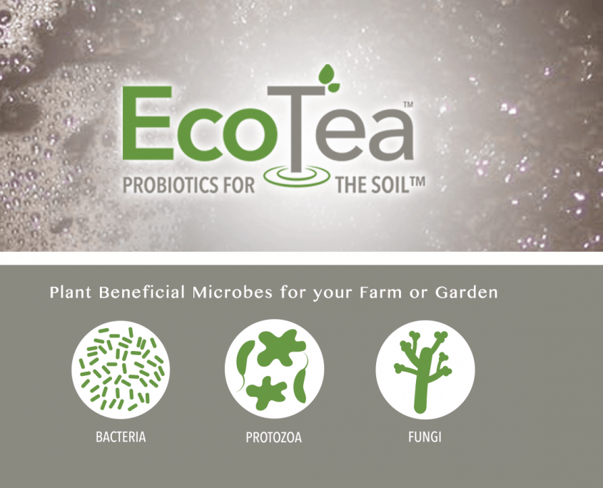 EcoTea Probiotics for the soil