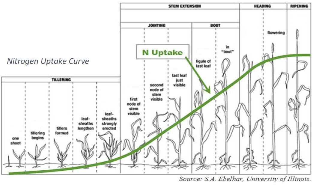 Nitrogen on winter wheat chart