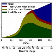 Corn Nitrogen Response Curve