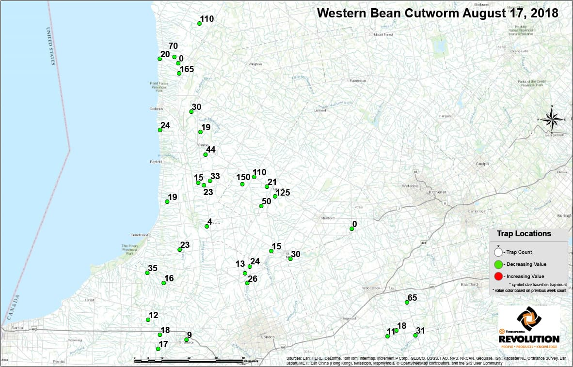 Western Bean Cutworm Trap Counts Aug 17_north