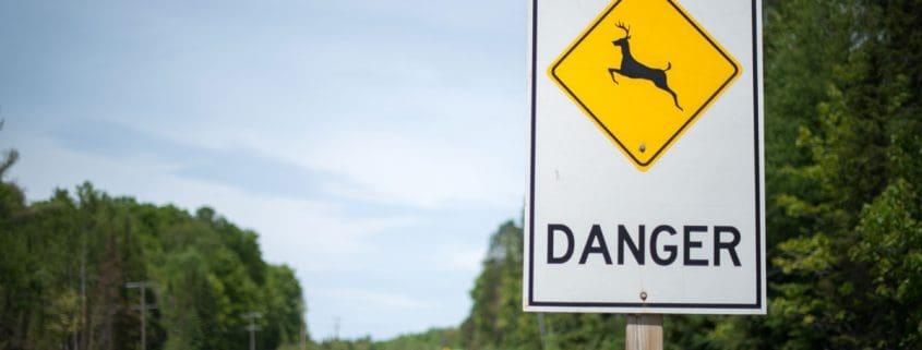 Deer crossing sign